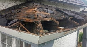A Leaking Roof Can Ruin More Than Just Your Day - Roof Damage Repair by RIG